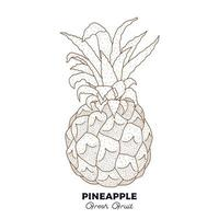 desenho de frutas vintage de abacaxi vetor