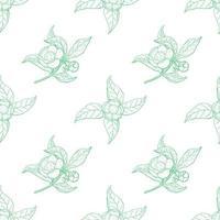 padrão de contorno verde vintage camellia sinensis vetor