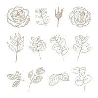 conjunto de flores e plantas vintage vetor