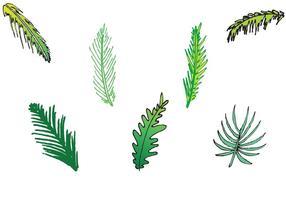 Série de vetores isolados de folhas de palmeira grátis