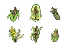 Série de vetores de Ear of Corn grátis