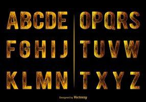 Alfabeto elegante vetor
