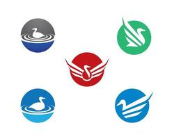 conjunto de modelo de logotipo de pato vetor