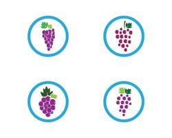 modelo de logotipo de uva de círculo vetor