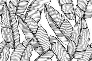 padrão sem emenda desenhada de mão de folha de bananeira