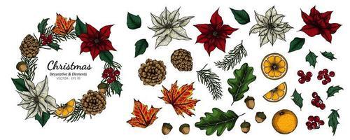 conjunto de decoração natal flores e folhas vetor