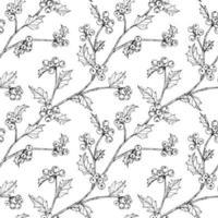 mão desenhada bagas de azevinho e folha sem costura design vetor