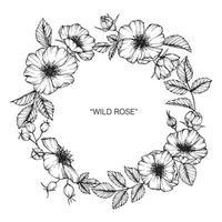 flor rosa selvagem e folha mão desenhada grinalda vetor