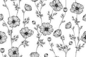 mão desenhada cosmos flor sem costura padrão vetor
