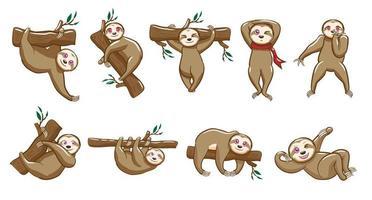 conjunto de desenhos animados de preguiça kawaii vetor