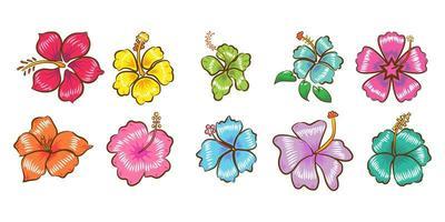 conjunto de flor de hibisco vetor