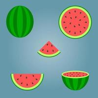 conjunto de pedaços de melancia vetor