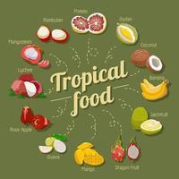 conjunto de frutas tropicais vetor