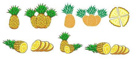 conjunto de abacaxi amarelo vetor