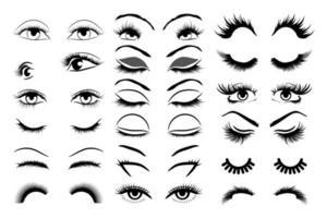 conjunto de olhos femininos vetor