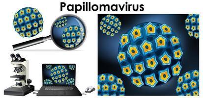 vírus de papilomavírus e lupa vetor