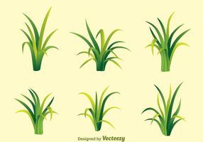 Fragmento de vetores de grama verde