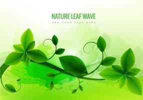 Folha natural fundo verde vetor
