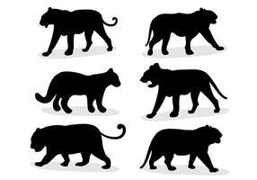 Vetor animal tigre