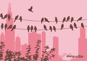 Vetor pássaros em um fio