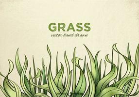 Vector de grama desenhada mão livre