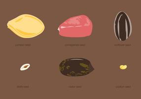 Conjunto de tipos de sementes vetor