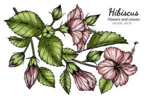 folhas e flor de hibisco rosa vetor