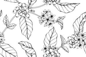 flores de café desenhadas vetor