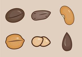Ilustração de vetor de semente grátis