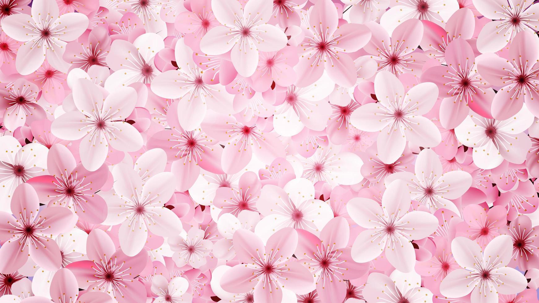 fiori rosa sakura sboccianti rosa vettore