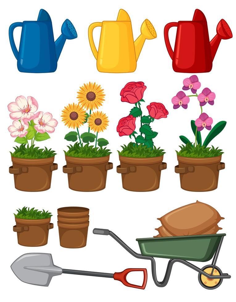 fiori e attrezzi da giardinaggio vettore