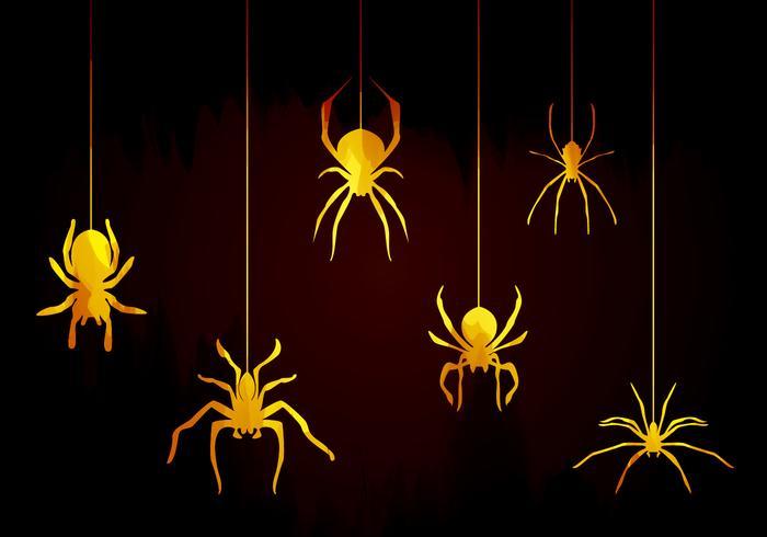 Vettore di ragni tarantola