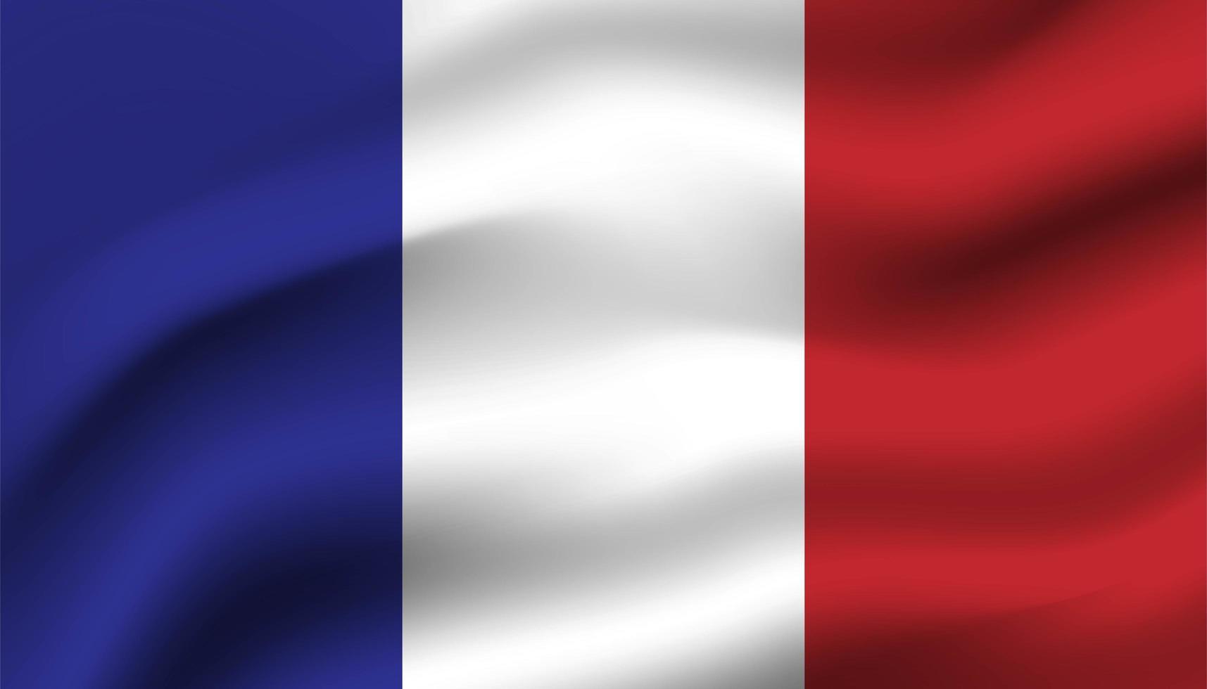 bandiera della Francia sullo sfondo vettore