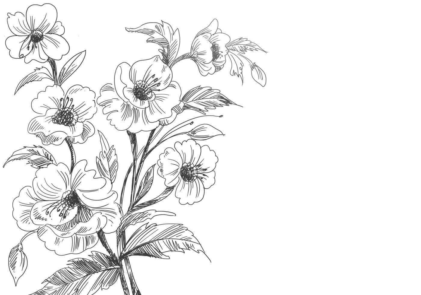 disegno floreale schizzo decorativo artistico vettore