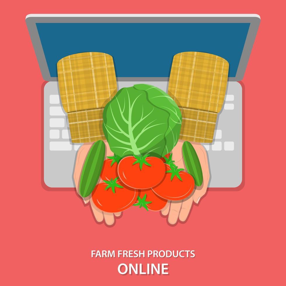 mani del coltivatore che tengono le verdure che appaiono dal computer portatile vettore