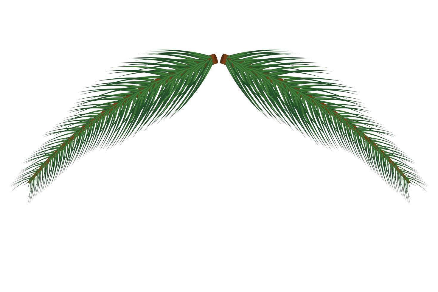 ramo di albero di natale vettore