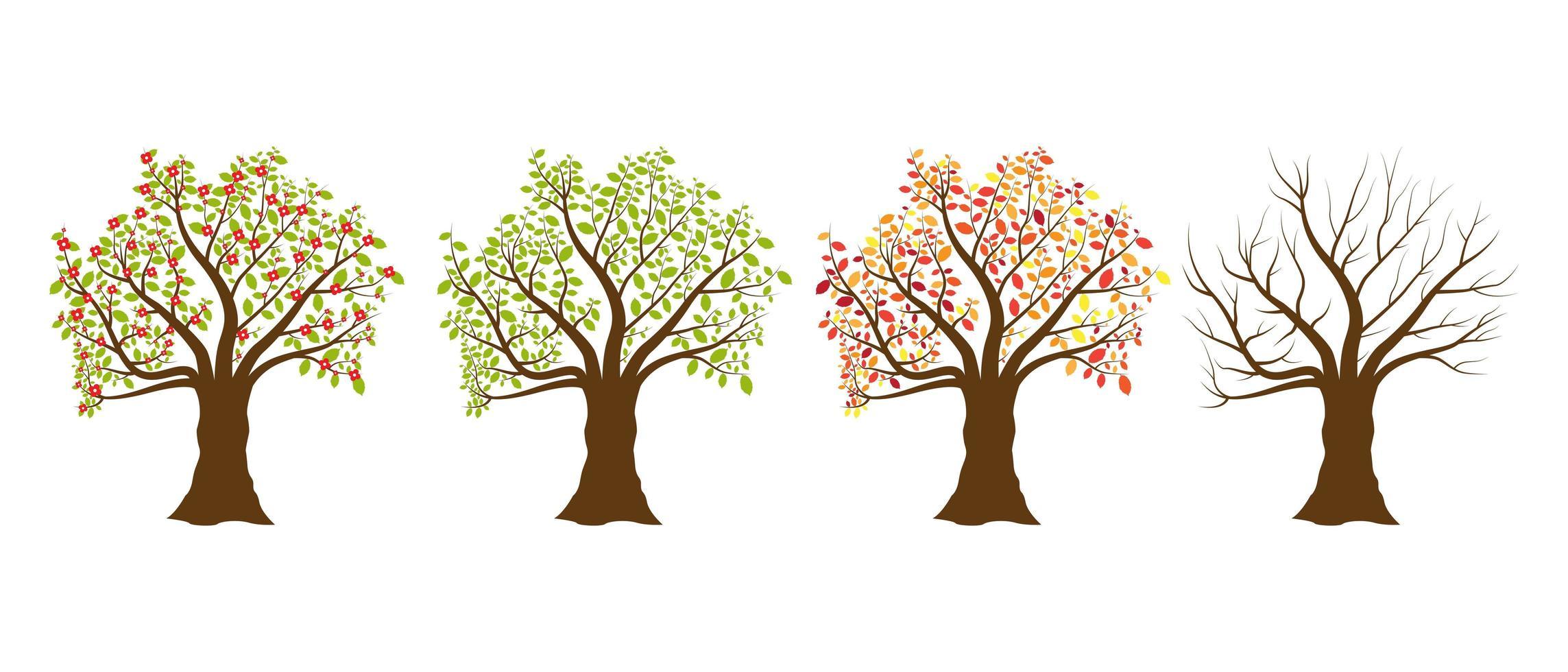 alberi di quattro stagioni vettore