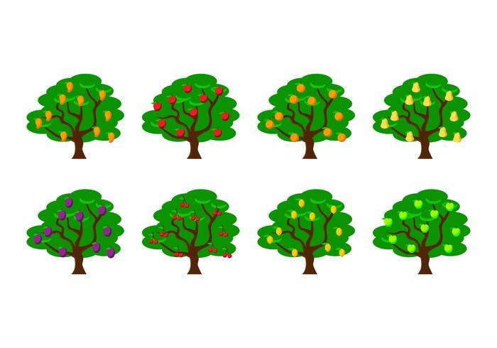 Illustrazione vettoriale di albero da frutto
