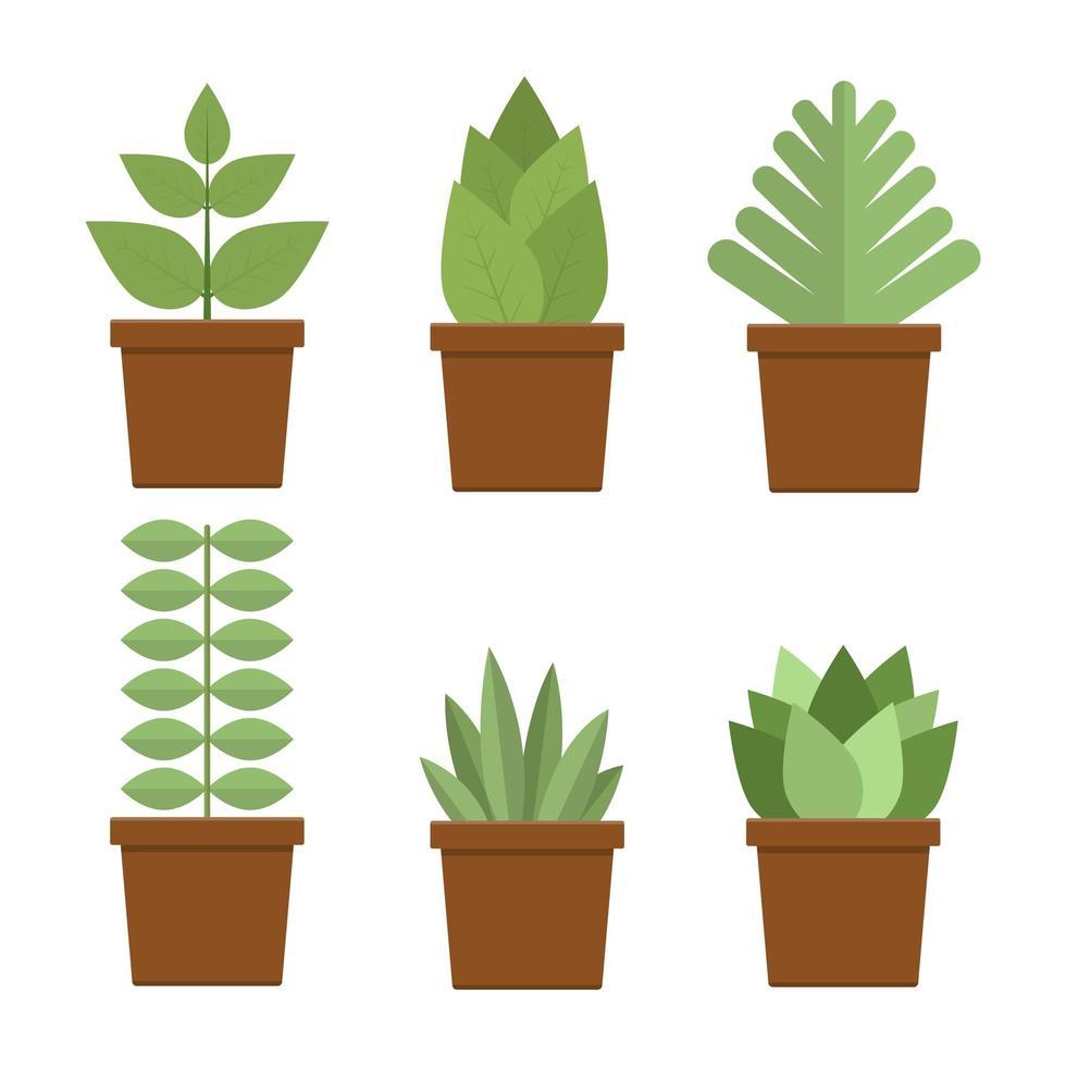 pianta in vaso vettore