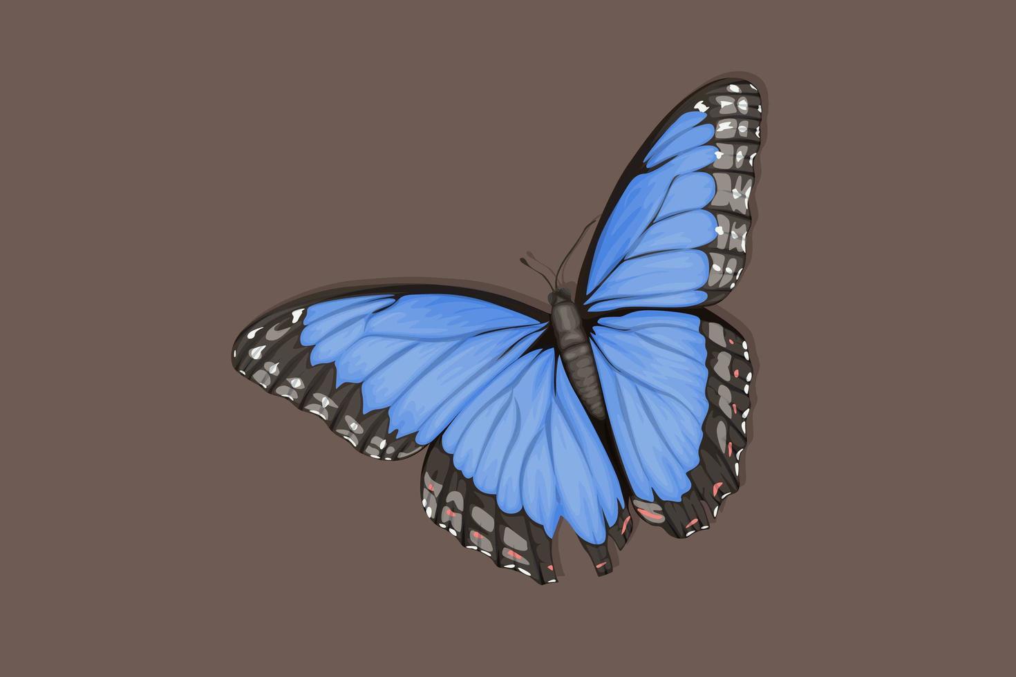 bellissima farfalla blu con ali graziose vettore