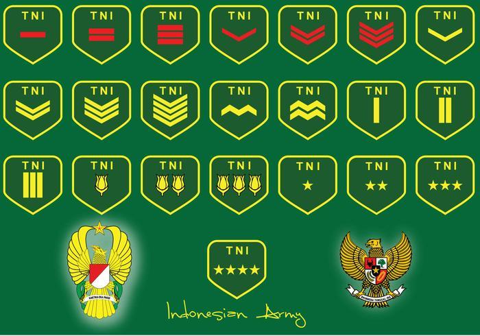 Classifica dell'esercito indonesiano vettore