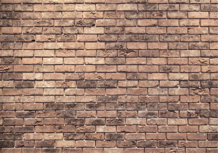 Struttura del muro di mattoni di vettore
