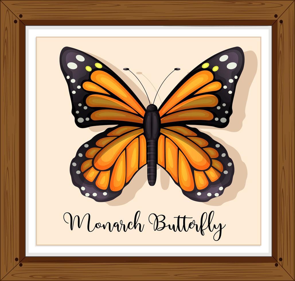 farfalla monarca su telaio in legno vettore