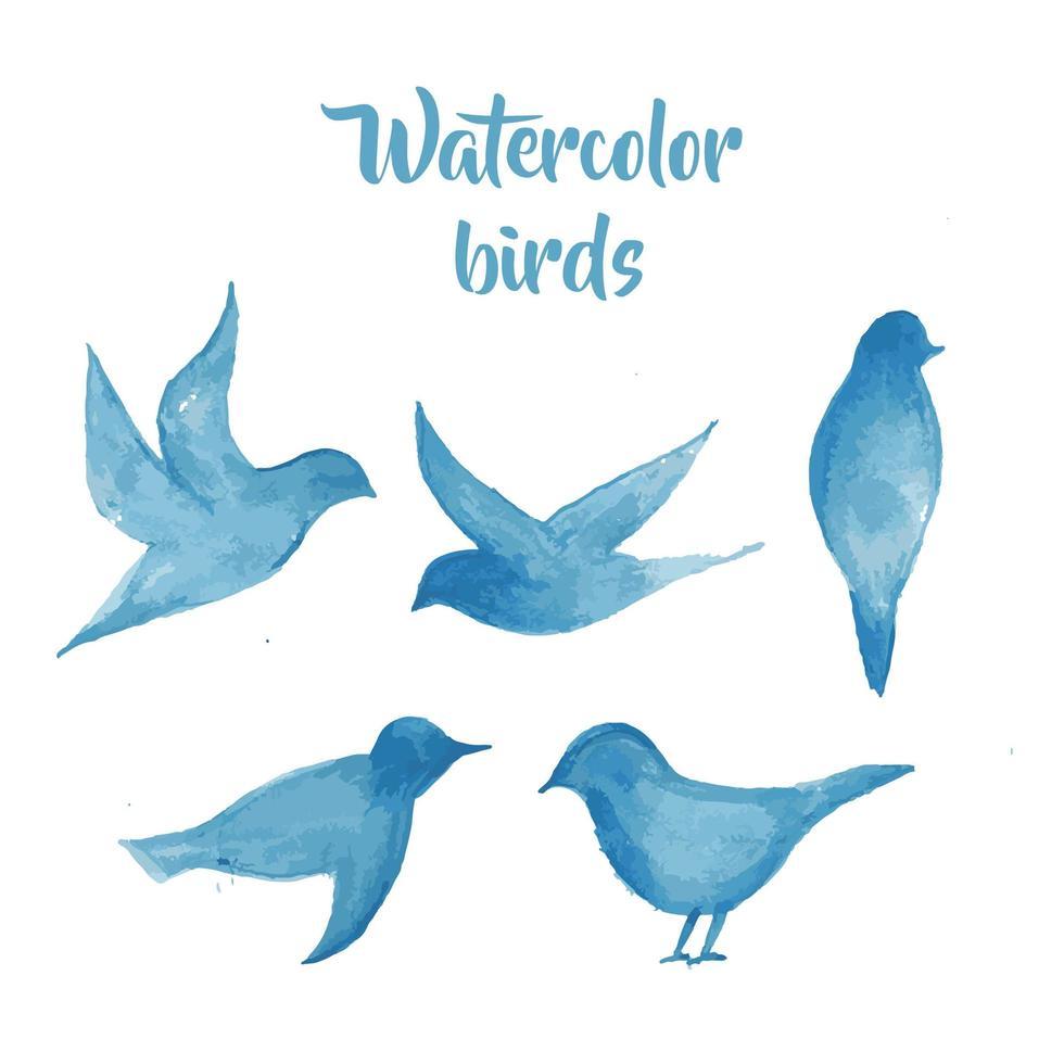 uccelli in acquerello vettore