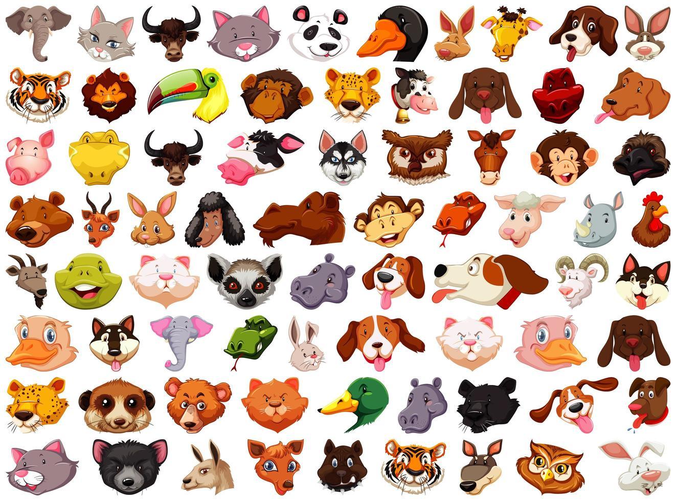 set di diverse teste di animali dei cartoni animati su bianco vettore