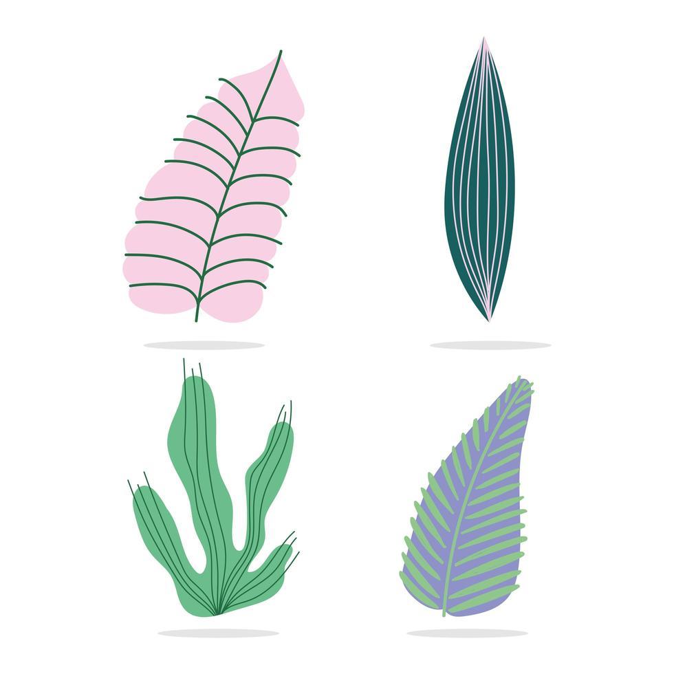 set di foglie e fogliame tropicali vettore