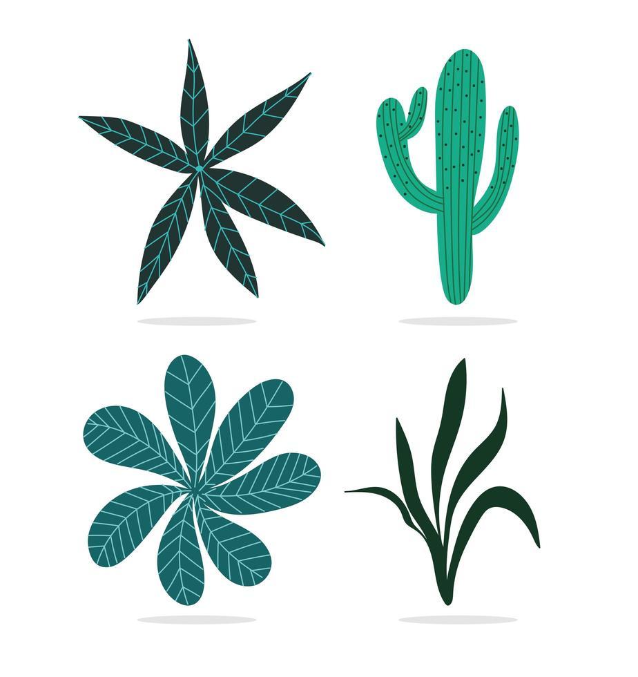 insieme di piante esotiche vettore