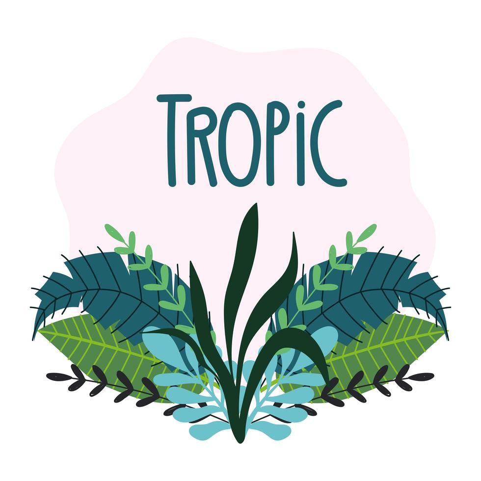 foglie tropicali e fogliame con scritte vettore