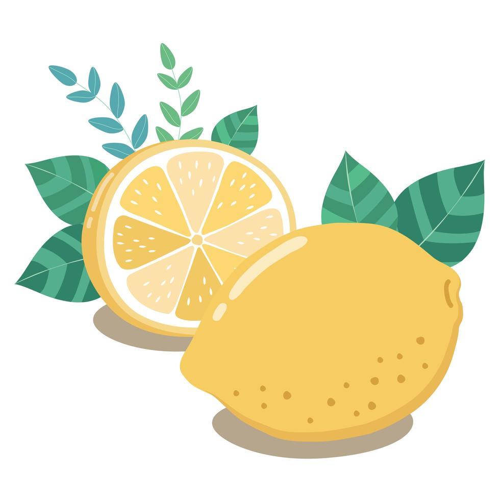 metà di limone fresco con foglie verdi vettore