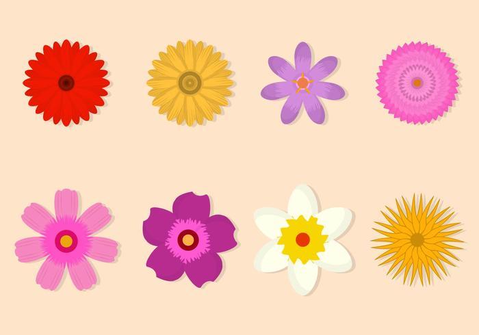 Collezione di fiori vettoriali